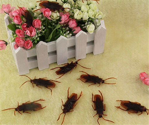 50pcs-Fake-Cockroaches
