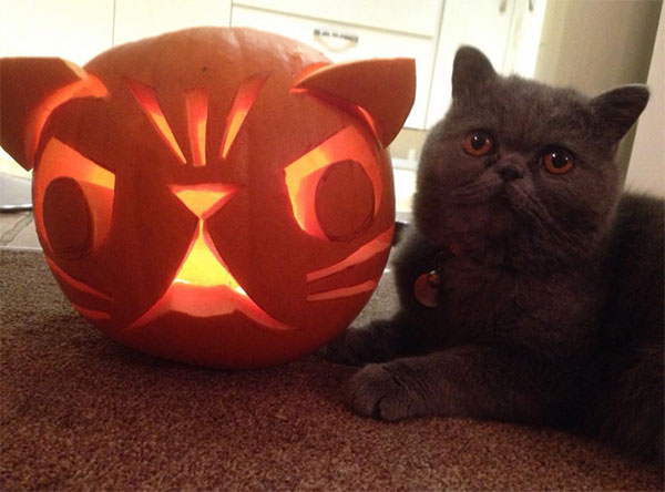 40 Best Cool Amp Scary Halloween Pumpkin Carving Ideas