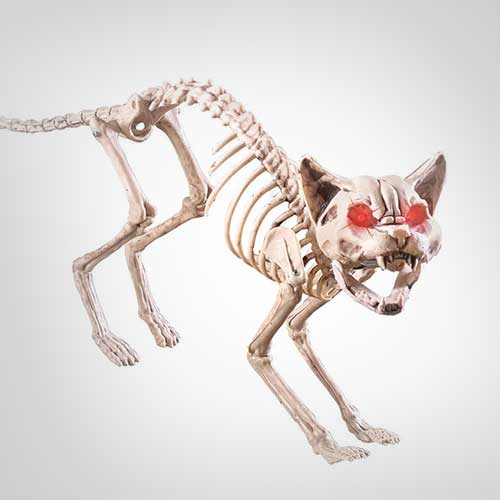 Motion-Sensored-Skeleton-Cat-for-indoor-Halloween-Decoration
