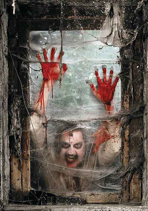 zombie-window-backdrop-banner