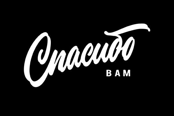 logotype-2016-2017-(17)