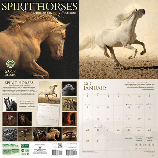 Horses-2017-Wall-Calendar-4