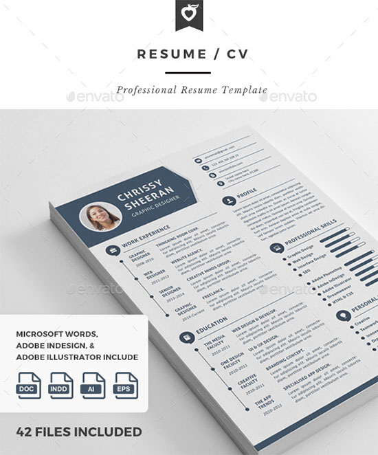 10 all time best premium simple  u0026 infographic resume    cv template in word  ai  indd  psd  u0026 cdr