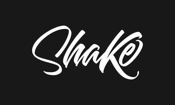 Stunning-type-logo-design-logotype-examples-2017-(10)