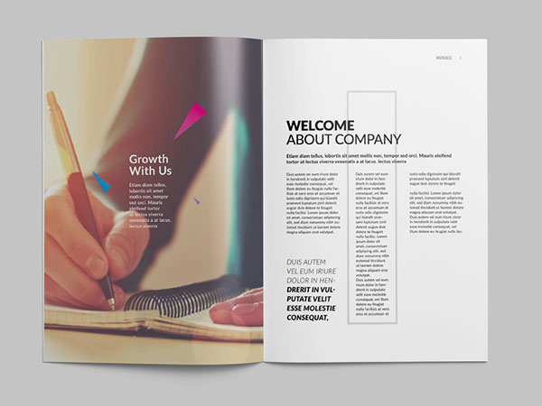 Triangle-Style-Brochure-Template-1