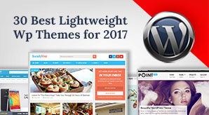 30-best-lightweight-premium-wordpress-themes-for-2017