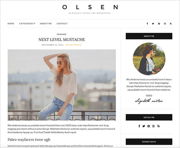 olsen-light-best-blogging-theme-everyone-new-blogger