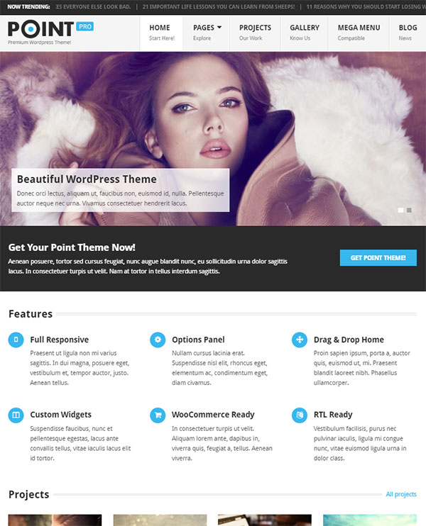 point-wordpress-theme-2017