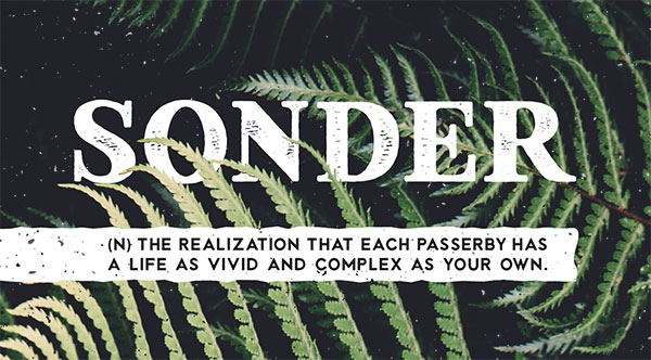 sonder-free-type-family