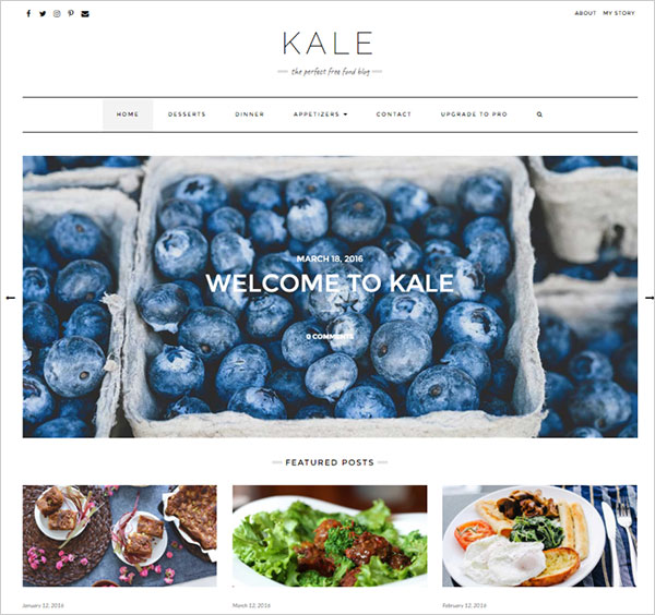 Kale-minimal-food-Business-or-Blogging-theme-2017
