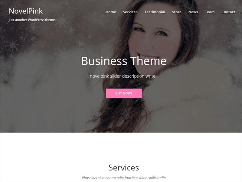 NovelPink-One-Page-Responsive-WordPress-Theme
