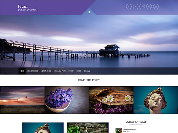 Plum-unique,-ultra-creative-multipurpose-WordPress-theme
