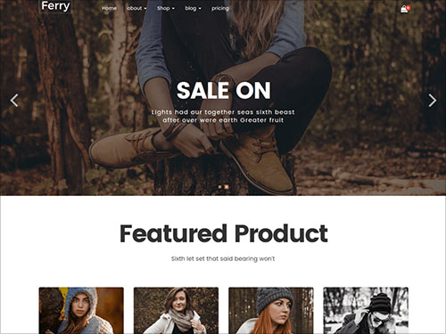 Ferry-Bootstrap-Wordpress-Theme-for-photography,-e-shop,-gallary,-magzine,-blog,-portfolio,-music