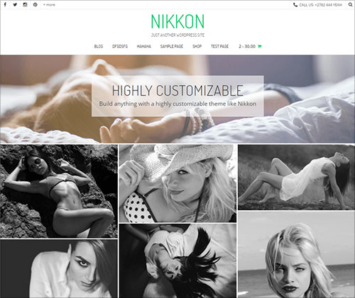 Nikkoncreative-multipurpose-WordPress-WooCommerce-theme-for-portfolio-websites