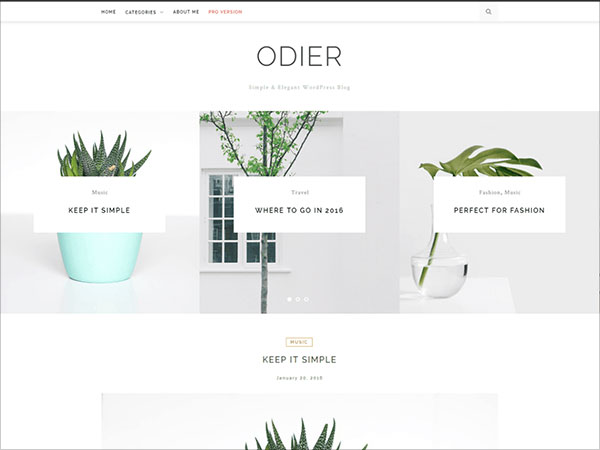 OdierLite-Simple-&-Elegant-WordPress-blog-theme