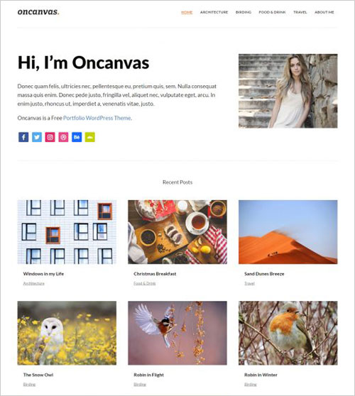 Oncanvas-light-minimal-distraction-free-portfolio-wordpress-theme-2017