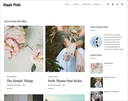 Simple-Perle-Most-Beautiful-Wordpress-theme-for-portfolio-website-projects