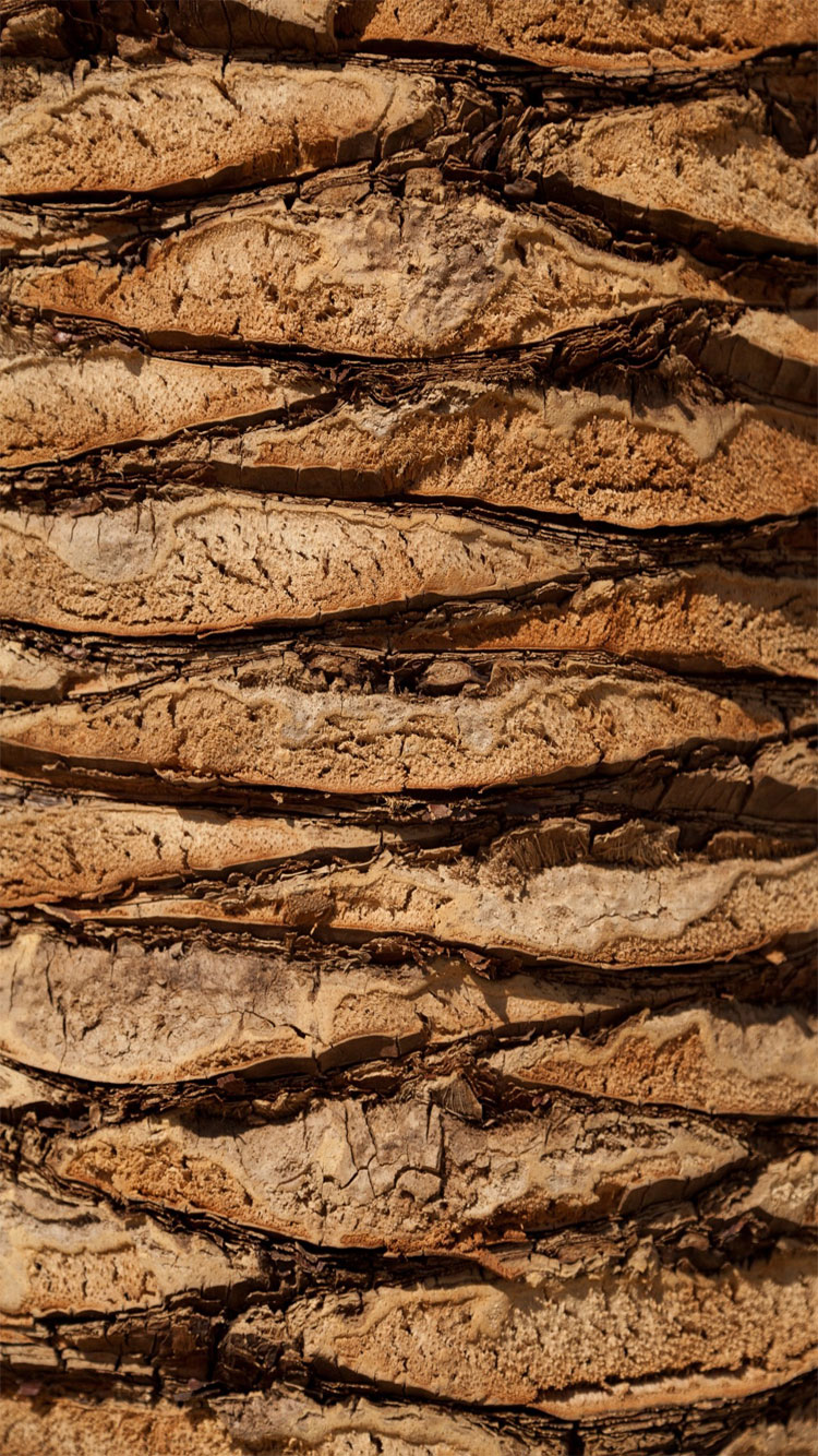 Wood-iPhone-Background-HD