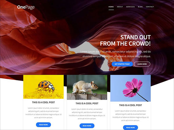 One-Page-Express-beautiful-WordPress-Theme-2017-