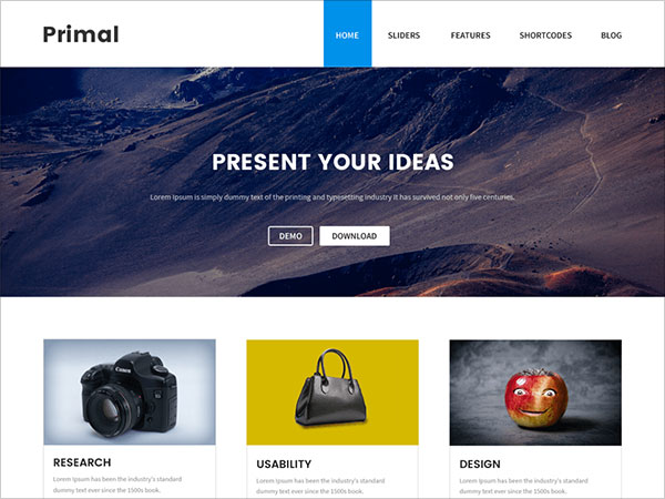 Primal-modern,-stylish-and-responsive-wordpress-theme-2017