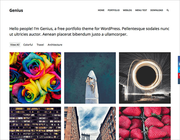 Genius-simple-portfolio-theme