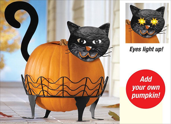 Black-Cat-Pumpkin-Holder