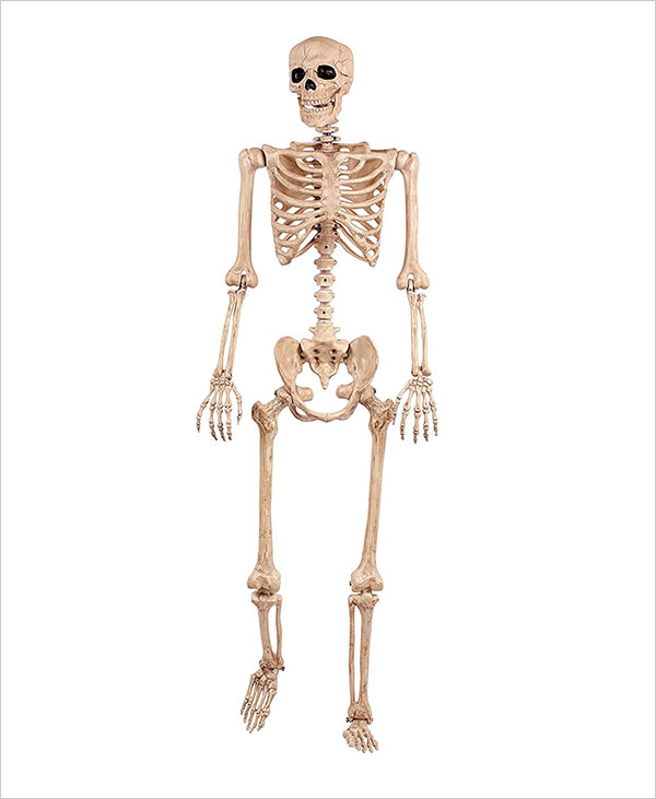 Crazy-Bonez-Pose-N-Stay-Skeleton-2