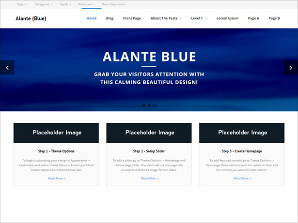 Alante-Blue-free-version-of-the-multi-purpose-professional-theme