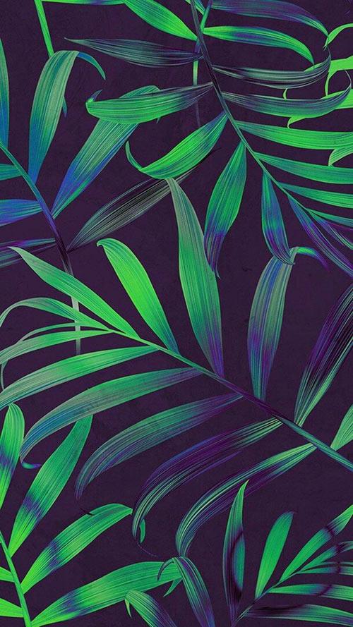 Beautiful-Nature-Apple-iPhone-7-Plus-&-Xiaomi-MiUI-9-Wallpapers-(9)