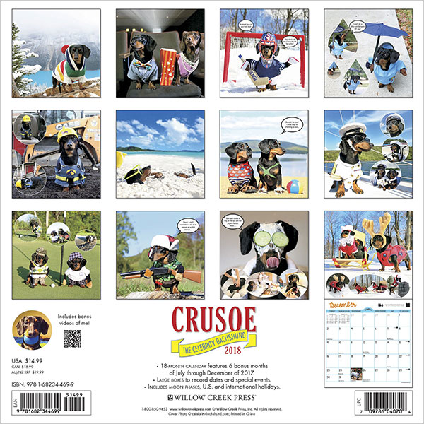 Crusoe-the-Celebrity-Dachshund-2018-Wall-Calendar-(Dog-Breed-Calendar)-2