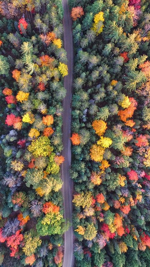 Drone-Nature-Apple-iPhone-7-Plus-&-Xiaomi-MiUI-9-Wallpaper-(5)