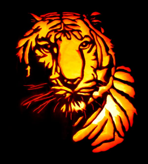 Tiger_Pumpkin-carving-2017