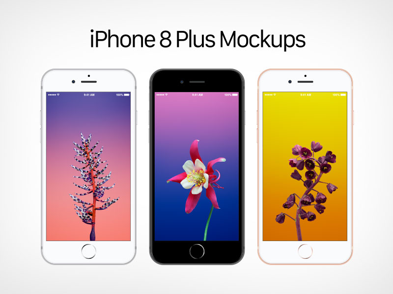 Free-Vector-Apple-iPhone-8-Plus-Mockup-Ai-&-EPS