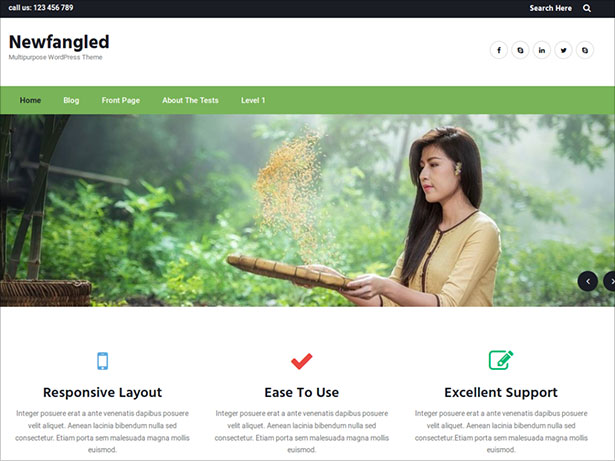 Newfangled-Free-WordPress-theme-to-use-for-multipurpose