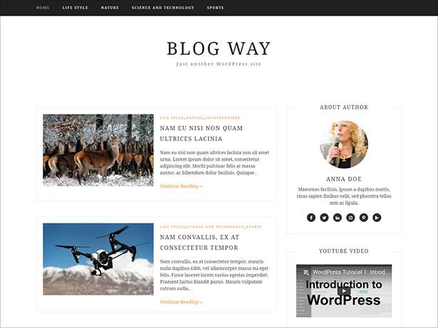 Personal-Blog-minimal-responsive-theme-2017