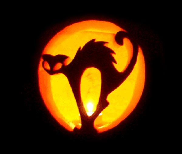 cat_pumpkin-carving