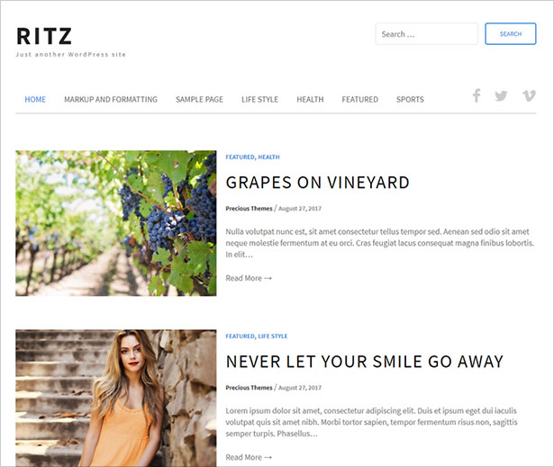 Ritz-feature-rich,-well-designed-blog-theme-for-WordPress-2017