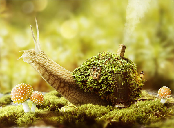 Fantasy-Snail-Photo-Manipulation-With-Adobe-Photoshop