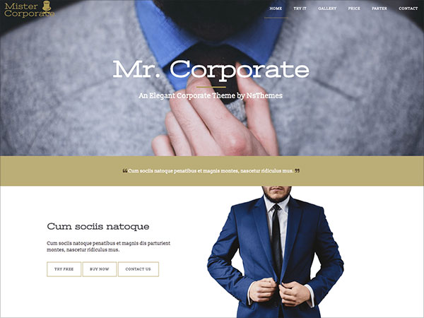 Mistercorporate-awsome-one-page-business-WordPress-theme-with-gallery-pricing-table-map