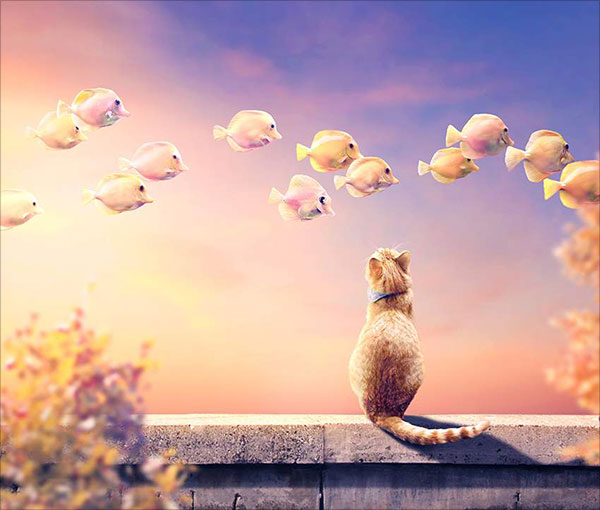 Photo-Manipulation-of-a-Cat-and-Flying-Fish-With-Adobe-Photoshop