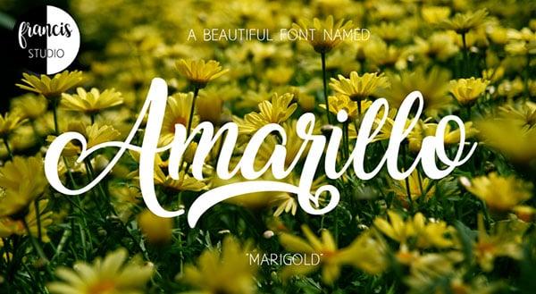 Amarillo-Best-free-script-font-of-2018