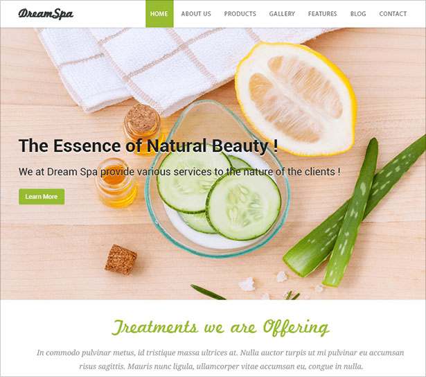 Dream-Spa-elegant-WordPress-child-theme-of-Spasalon-theme-2018