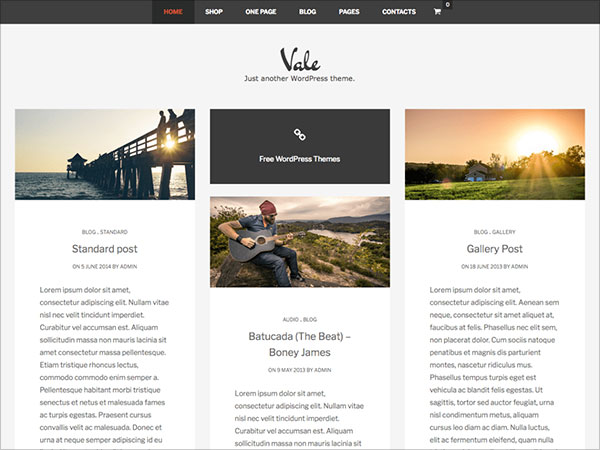 Vale-new-SuevaFree-child-theme,-optimized-to-work-with-WooCommerce
