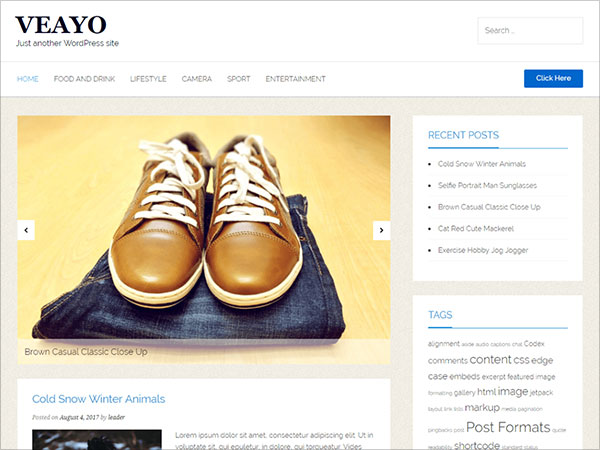 Veayo-fast-loading-WordPress-theme-from-the-purveyors