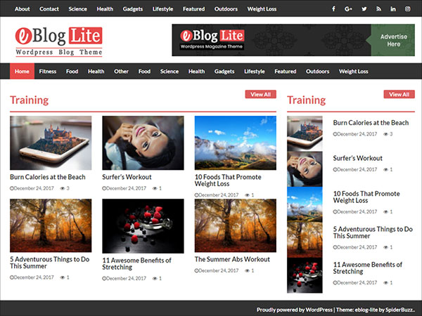 eBlog-Lite-modern,-clean,-colorful-and-responsive-blog-theme-2018