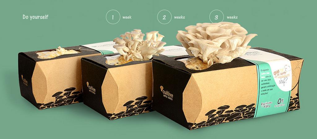 Packaging-Cultive-Uma-Ideia