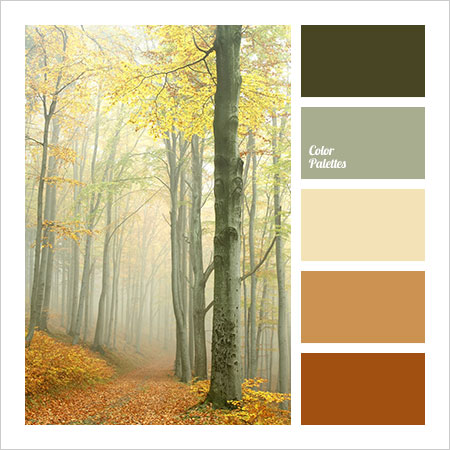 Best-Color-Combinations-(1)