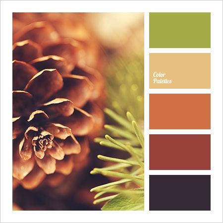 Best-Color-Combinations-(10)