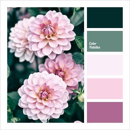 Best-Color-Combinations-(2)