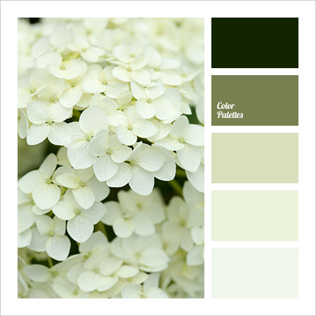 Best-Color-Combinations-(24)